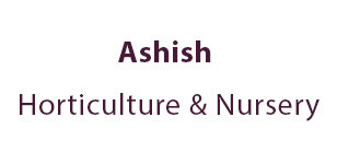 Ashish Horticulture & Nursery
