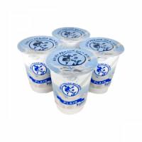plain-kp-yogurt.jpg