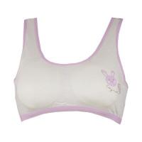 plane-bra-with-purple-rabit-image.jpg