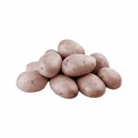 potato11-fd5b0.jpg