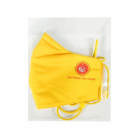 yellow-mask11.jpg